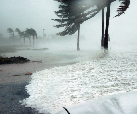 Hurricane Insurance: Is It Important? Why Do You Need It?